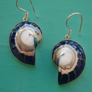 Nautilus Earrings Blue