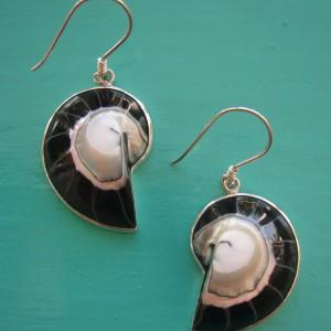 Nautilus Earrings Black