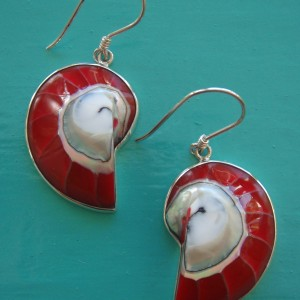 Nautilus Earrings Red