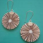 Seashell Spider Shell Earrings