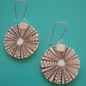 Seashell Spider Shell Earrings
