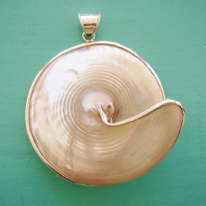 Mother of Pearl Trochus Pendant