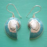 Nautilus Earrings Turquoise