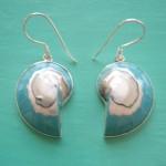 Nautilus Earrings Turquoise