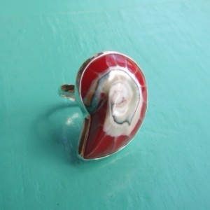 Nautilus Ring Red