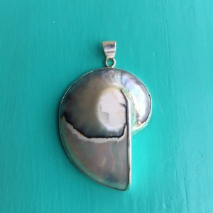 Nautilus Pendant Large Pale Blue