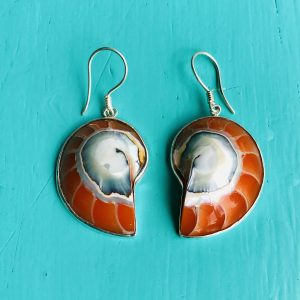 Orange Nautilus Earrings